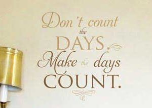 Don't count the days. Make the days count. Wall Decal