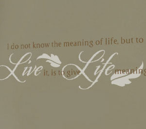 I do not know the meaning of life Wall Decal