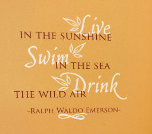 Live in the Sunshine Swim in the Sea Wall Decal