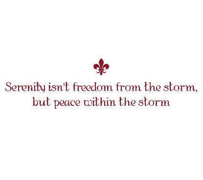 Serenity Isn't Freedom from the Storm Wall Decal