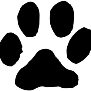 Cat Pawprint Lettering Art 15 1 Wall Decal