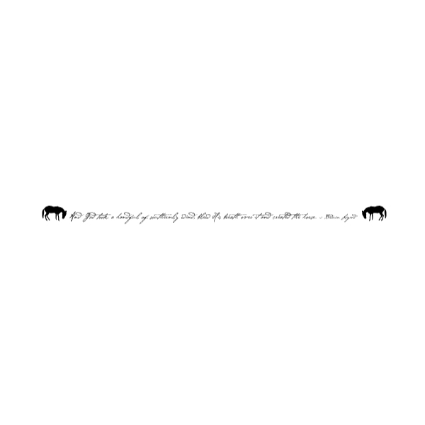 Horse Silhouette 3A LAK 12-C Cowboy Wall Decal