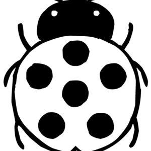 Ladybug 5 LAK 19-6 Ladybugs Wall Decal