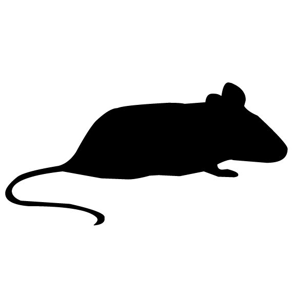 Mouse Silhouette A LAK 14 m Animal Wall Decal