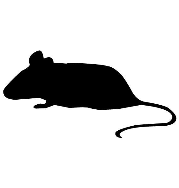 Mouse Silhouette B LAK 14 n Animal Wall Decal