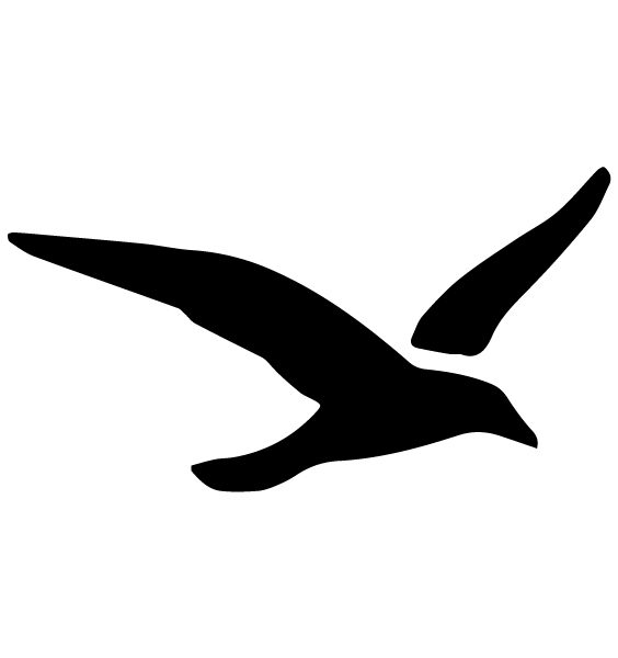 Seagull Lettering Art 5 l Wall Decal