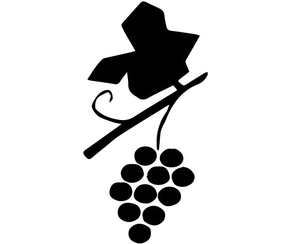 Vine and grapes Lettering Art 16-E Wall Decal