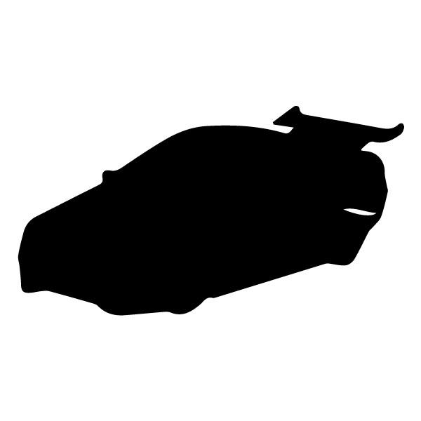 Race Car silhouette 6B LAK 5 B Racing Wall Decal