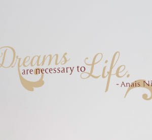 Dreams are necessary Wall Decal